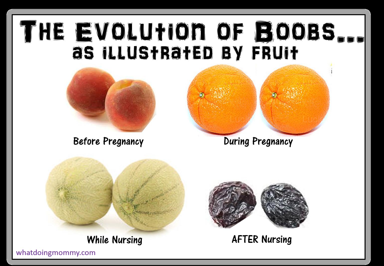 boob humor picture